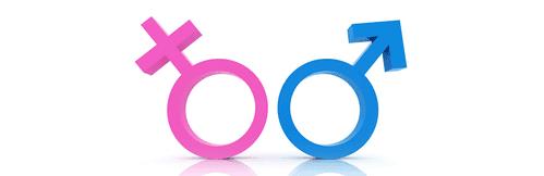 Habitudes de pari des Hommes et Femmes